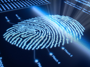 careers with forensic science degree