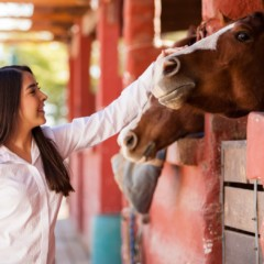 What Can You Do With An Equine Science Degree?