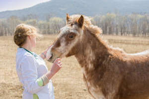 What jobs can you get with an Animal Science degree?